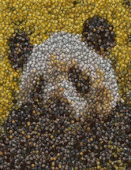 6. Paul Van Scott – Panda Bear